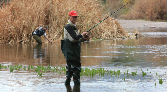 Azgf top 5 az fishing holes for this winter for Arizona game and fish stocking schedule