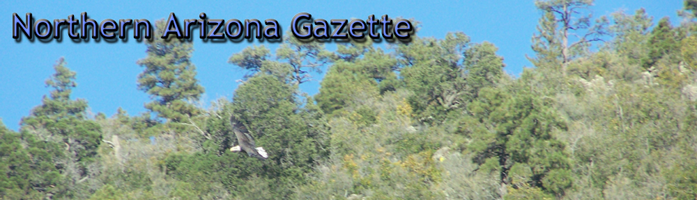 Northern Arizona Gazette